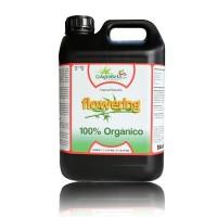 Agrobeta Flowering Black Line, 5L