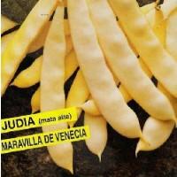 Semillas Judia Maravilla de Venecia 250Gr