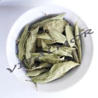 Stevia en Hoja Deshidratada (50 Gr.)