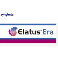 Elatus Era, Fungicida de Syngenta