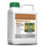 Kenogard Preparado Especial Floración, Cuaje y Desarrollo de Frutos Brindos B-Moly, Bidón 5 Litros