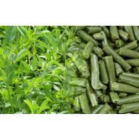 Alfalfa Deshidratada Saco 10Kg. Peletizada