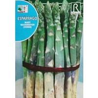 Esparrago MARY Washington (Verde). 3 Gr/150 Semillas.