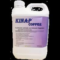 Kinap Copper