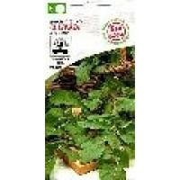 Semillas Bio Rucola 7 Gr