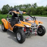 Buggy Kinroad 1100, 5200 Euros, Envios Gratis,
