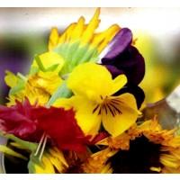 Flores Comestibles en Mezcla. 2 Gr. Semillas