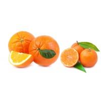 Mandarinas y Naranjas 10Kg.