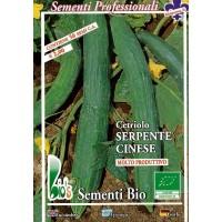 Semillas Ecologicas de Pepino Serpiente China- 50 Semillas