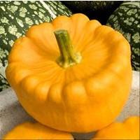 Calabaza Naranja Patisson Orange. Calabaza Go