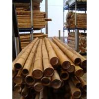 Bambú Decoracion 210Cm de Largo y Calibre 40/