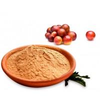 Camu Camu Organic Powder (Myrciaria Dubia)