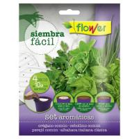 Semillas Siembra Fácil Aromáticas Flower - 4