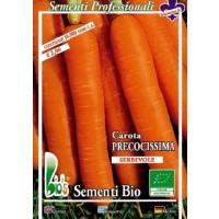 Zanahoria Touchon 50 Gr - Semillas Ecológicas