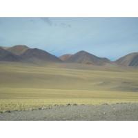 520.000 Htas.en Argentina