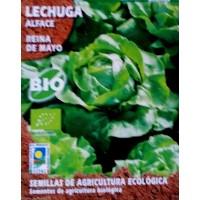 Lechuga Reina de Mayo. Cultivo Ecologico. 2 Gr / 120 Semillas