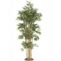 Arbol Bambu Oriental 1,90M