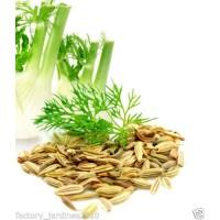 Hinojo Semillas. Propiedades Digestivas. 1 Ki