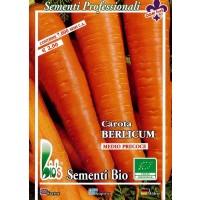Zanahoria Berlicum (Medio Tardia) 50 Gr - Semillas Ecológicas