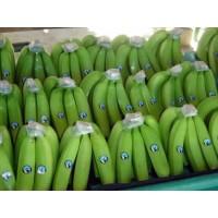 Banano, Platatno