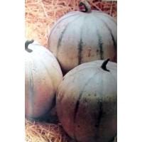 Melón Cantaloup Charentais. 500 Gr / 12.000