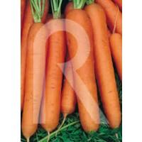Zanahoria Nantesa 10gr