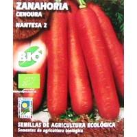 Zanahoria Nantesa 2.  4000 Semillas 5 Gr.  Cultivo Bio-Ecológico.