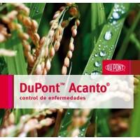 Acanto,  Fungicidapara el Control Eficaz de las Principales Enfermedades Foliares y de Espigas (Helmintosporium y Pyricularia) en Arroz