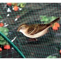 Malla Antipajaros. Protección de Cultivos contra Pájaros. 4 X 250 Metros