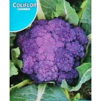Coliflor  Violeta Catanese. Envase Hermético de 3 Gr/750 Semillas.