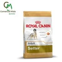 Pienso Royal Canin Setter Adult 12Kg para Perros Adultos