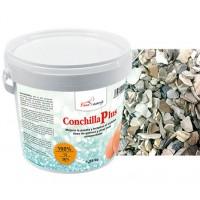 Conchillaplus 1,25Kg