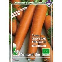 Semillas Ecológicas de Zanahoria Nantesa - 50 Gr