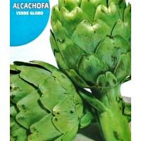 Alcachofa Verde Globo.  Envase Hermético de 1 GR.