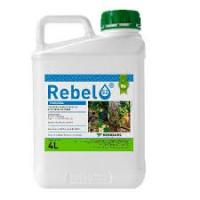 Kenogard Fungicida Líquido Rebel 52