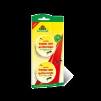Neudorff Insecticida Hogar Loxiran Trampa Gel Antihormigas 2 Trampas