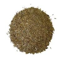 Ray Grass Rigidum Certificado 20 KG
