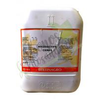 Rhizoactive Fisioestimulante Fertinagro, 20 L