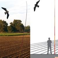 Scarybirds: Disuasorio de Pájaros