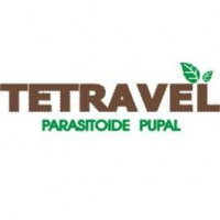 Tetravel