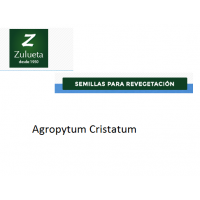 Agropyrum Cristatum. Semillas de Recuperación de Zulueta. 25 Kg