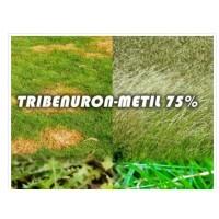 Tarika - Tribenuron-Metil 75% (100 Gr)