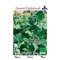 Espinaca Tetragonia - 150 Semillas Ecológicas