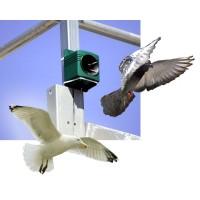 Ahuyentadores Sonoros para Aves