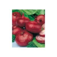 Cebolla Roja de Zalla Ecológica 4g
