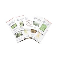 Pack Semillas Antimosquitos