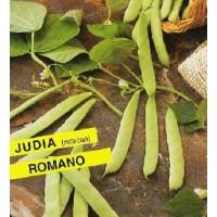 Semillas Judia Romano 250Gr