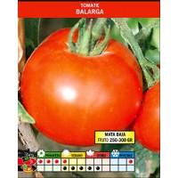 Tomate Balarga. 0,40 Gr / 80 Semillas. Frutos