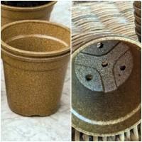 X20 Maceta de Arroz 100% Biodegradable. Ecoló