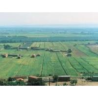 Seguros Explotaciones Agrarias.